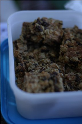 home made energy bars